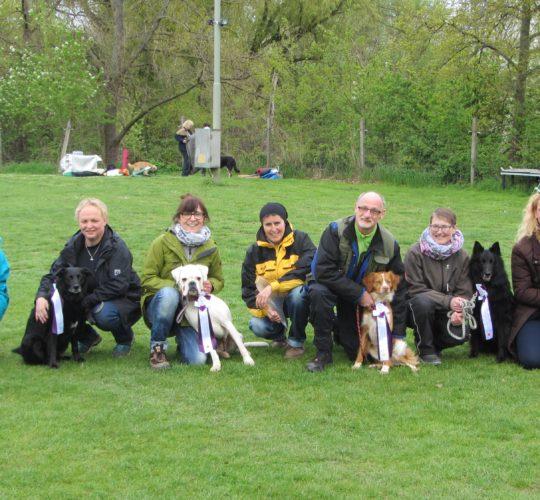 Turnier – Seite 2 – Hundesportverein