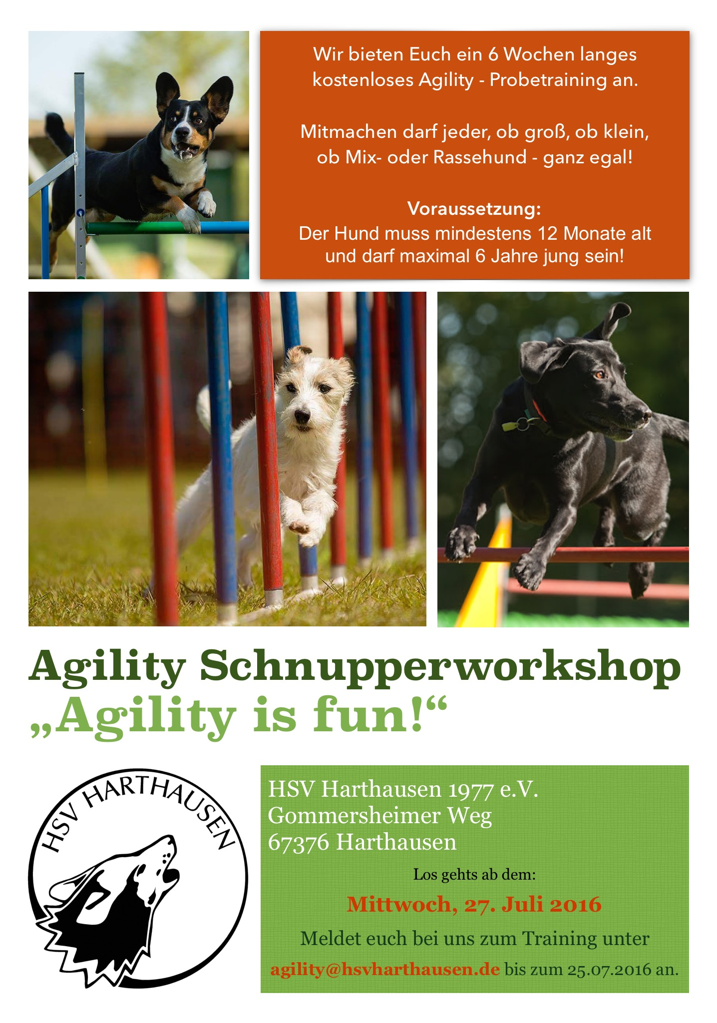 Schnupperworkshop