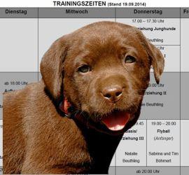 Trainingszeiten mit Hund